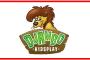 Djambo Kidsplay pupillentoernooi bij Be Quick '28: 20 mei 2017!